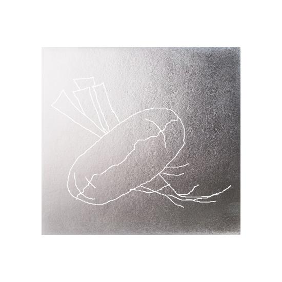 art prints - Silver veggies-Turnip by Avinash