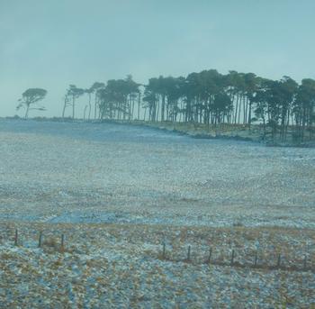 Snowey Glen Devon