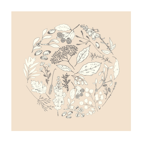 art prints - Botanical Circle by Maija Rebecca
