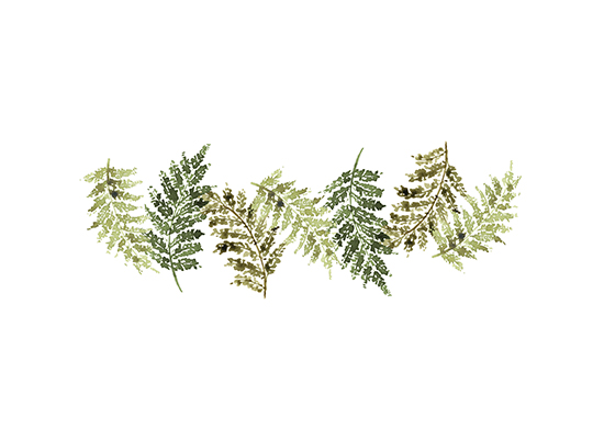 art prints - Fern Leaves by Melissa Selmin