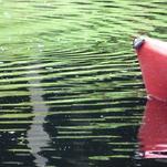 canoeing by Kalysta Vetter