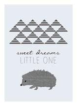 Little Hedgehog by Jacquelyn Smith