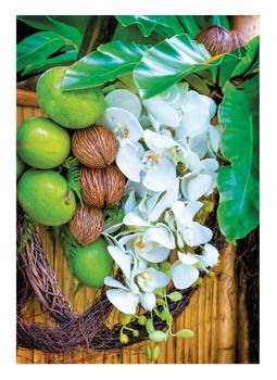 Orchids, Coconuts, and Tropical Fruits