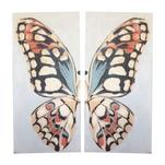 Butterfly Wings by Leanne Owens