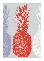 Pineapple Pop by Leanne Owens