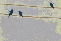 Hummingbirds by L. Manas