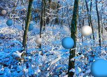 Sugar Snow by Tammy Senrick
