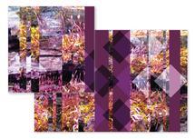 Geometric Moss by Tammy Senrick