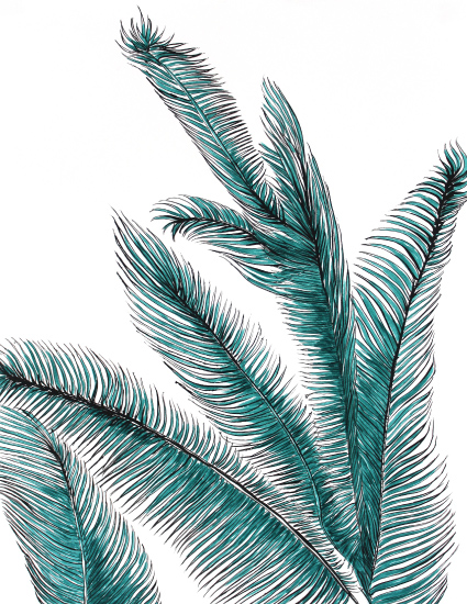 art prints - Palm by Alicia Bazan