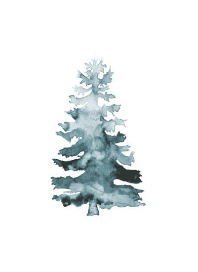 art prints - Simple Spruce by Kyla Donkersgoed