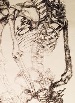 surreal skeleton