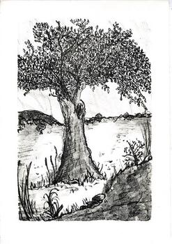 Tree Lithograph
