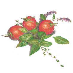 Tomatoes and Fresh Herbs
