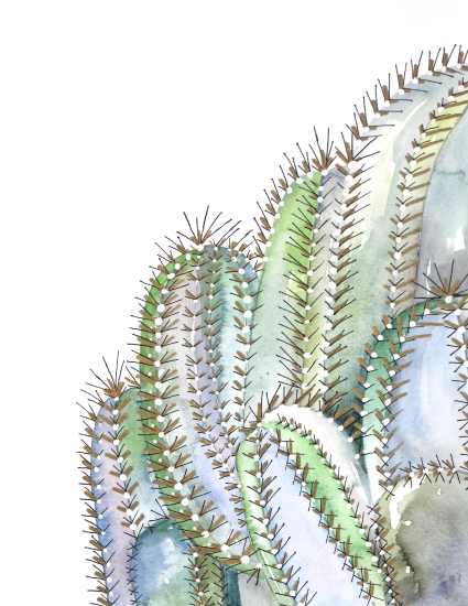 art prints - Cactus by Alicia Bazan