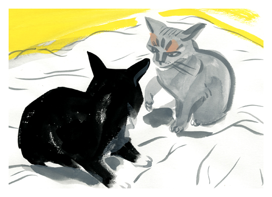 art prints - Making the bed (intermission between top sheet and bottom sheet) by Molly Mabel and Mitz