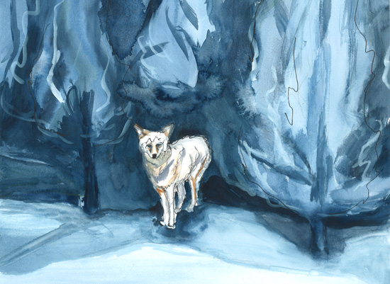 art prints - Lone Wolf by Alice Heinrich