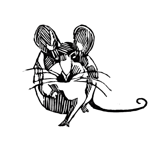 art prints - Little mouse by Alice Heinrich