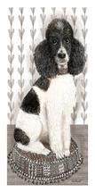 Poodle Portrait by pamela powell