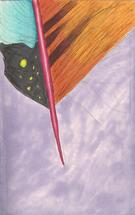 Feather Sketch in Brush... by Ernesto Vazquez-Belen
