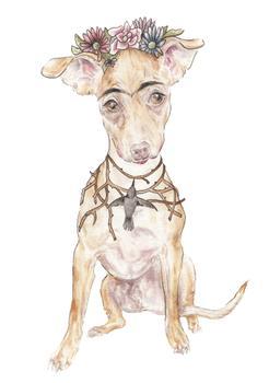 Frida Pup