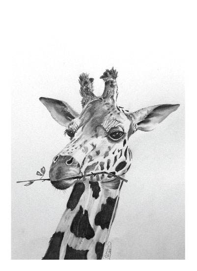art prints - Thoughtful Giraffe by ArtbyPunam
