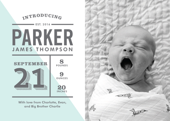 birth announcements - Flying Flag by Ever Upward Studio