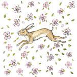Springtime hare by Jennifer Rizzo