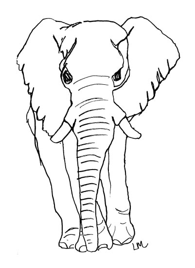 art prints - Elephant Contour Drawing by Laura Maxwell