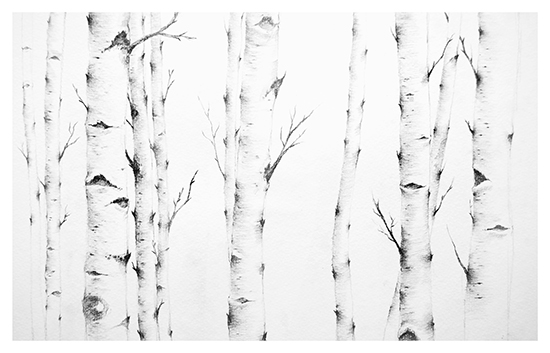 art prints - Birch Story by jinseikou