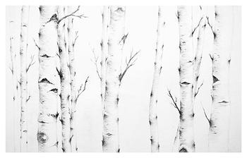 Birch Story