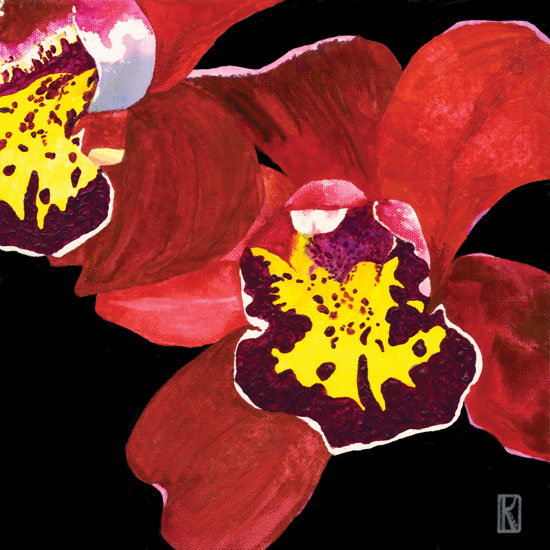 art prints - Orchid 1 Flaming Red Cymbidium by Karen Dyson