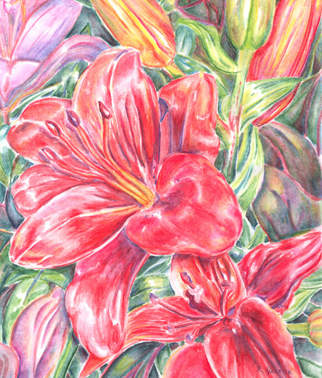 art prints - Red Burst by Rebecca Harrick