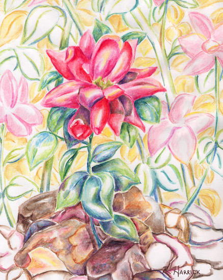 art prints - Summer Bright by Rebecca Harrick