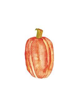 watercolor pumpkin #2