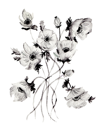 art prints - Greyscale Poppies by Shannon Kirsten