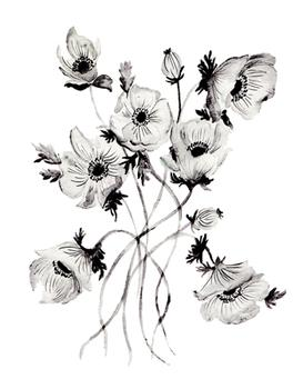 Greyscale Poppies