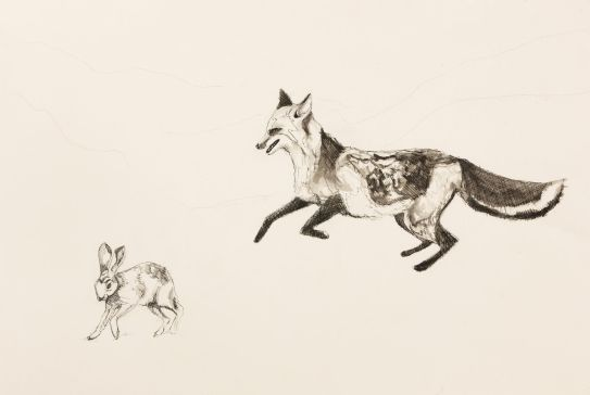art prints - The Chase by Alice Heinrich