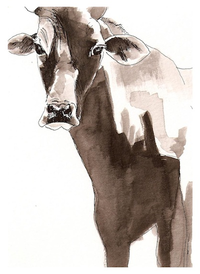 art prints - In the presence of the Cow by Alaine Ball