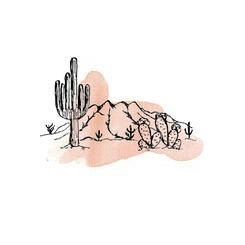 Painted Cacti