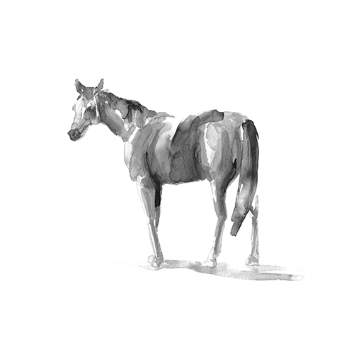 art prints - Urban Equestrian by The Carillos