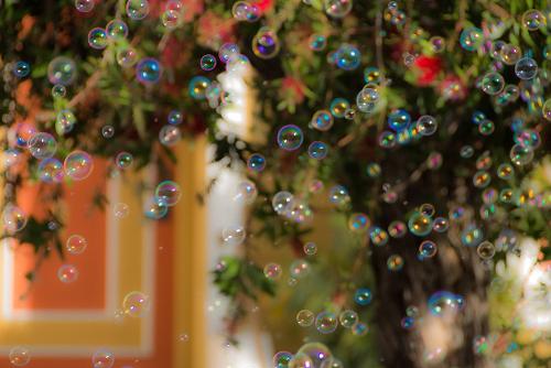 art prints - bubbles by Marie Matheson