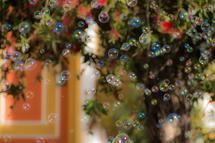 bubbles by Marie Matheson