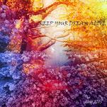 dream alive by Diane Amil