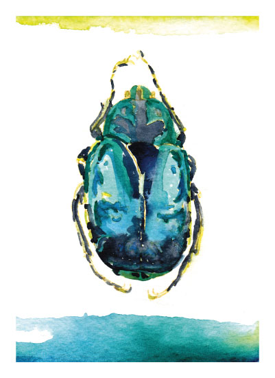 art prints - Bright Beetle by Mackenzie Foreman