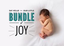 Modern Bundle of Joy by Alex Cottles