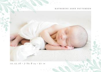 Baby Botanicals