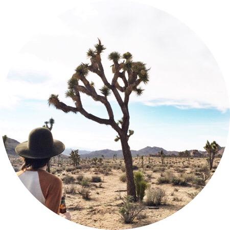 art prints - I found myself in Joshua Tree by Michelle Segura