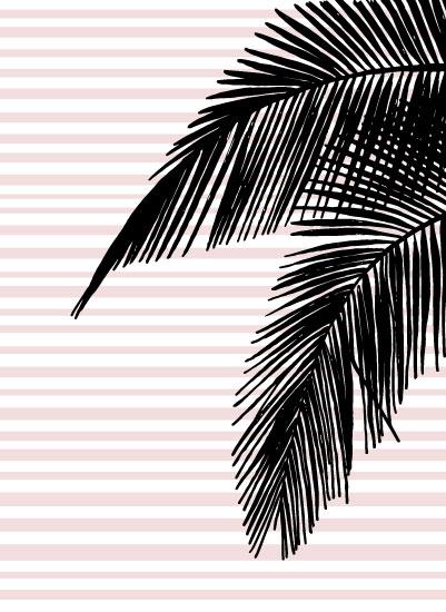 art prints - Florida Palm by Kari Joy