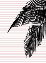 Florida Palm by Kari Joy