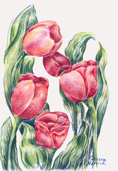 art prints - Springing by Rebecca Harrick